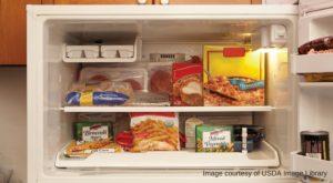 freezer-storage-1000x550